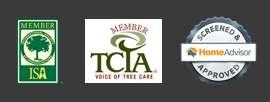 Tree Service Icons